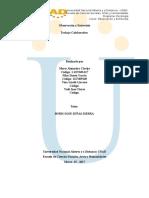 Borrador trabajo colaborativo Observación y Entrevista (3).docx