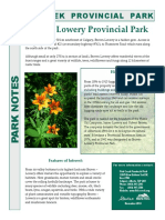 Brown Lowery Park Notes
