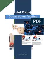 Trabajo Convulsiones Febriles 1