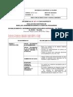 Modelo de Informe Dpa (Dpa Ñuro)