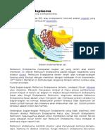 Retikulum Endoplasma Wikipedia