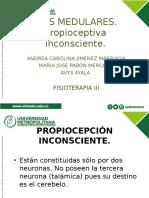 propioceptiva inconsciente