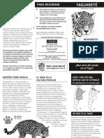 yaguarete (folleto)