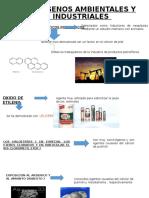 carcinogenos quimicos ambientales