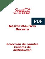 Seleccion de Los Canales de Distribucion (Autoguardado)