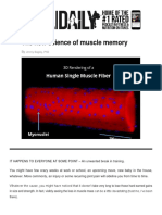 The new science of muscle memory