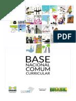 Base Nacional Comum Curricualr - BNCC.pdf
