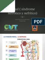 Síndrome nefrótico y nefrítico
