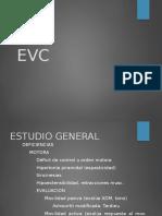 Evaluación EVC