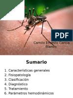 Dengue y Parámetros Hemodinámicos