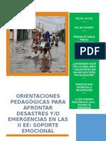 Orientaciones Pedagógicas y Sesiones Nivel Primaria 2017