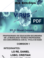 Virus Iset