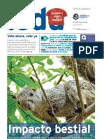 PuntoEdu Año 5, número 145 (2009)