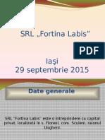 Prezentare Fortina LABIS