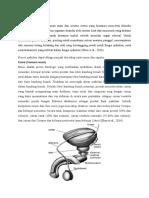 Fisiologi Ejakulasi