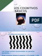 procesos cognitivos básicos