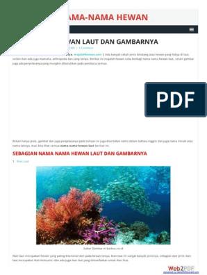 9200 Nama Dan Gambar Hewan Laut Gratis Terbaru