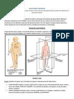 Anatomia - Planos Ejes Osteologia