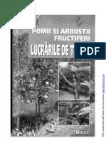 Lucrarile de taiere de Heiner Schmid.pdf
