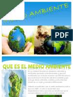 Medio Ambiente 2