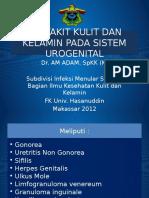 PENYAKIT_KULIT_DAN_KELAMIN_PADA_SISTEM_UROGENITAL_-_Copy.pptx
