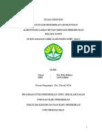 Nur Pitri Rahma-14B-1405119866-Pendidikan Lingkungan.docx