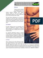Abdominales.pdf