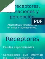 Los receptores