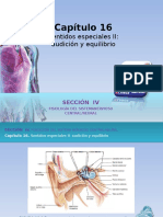 Raff_Fisiologia_FIGURAS_c16_AUDICION_Y_EQUILIBRIO (1)