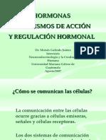 hormonas-1207095227771450-3