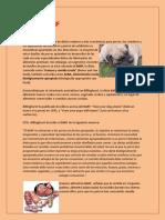 La dieta BARF RV.pdf