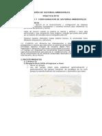 Diseño de Sistemas Ambientales- Parctica