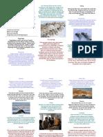 Nios - Greenlandic Brochure