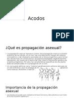 Acodos - Copia