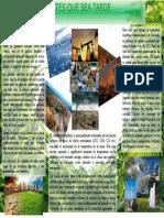 afiche medio ambiental