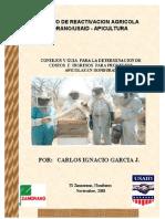 Manual Apicultura Honduras CIG2