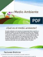 El Medio Ambiente.pptx