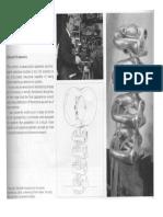 articles_about senster.pdf