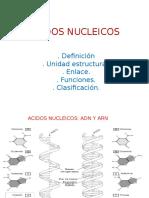 4. ACIDOS NUCLEICOS