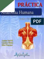 Guia de cuello y tronco pdf.pdf