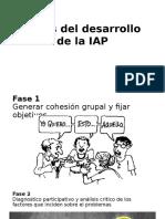 Fases Del Desarrollo de La IAP