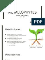 115 - Metallophytes