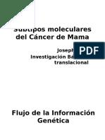 Subtypos Moleculares Del Cáncer de Mama