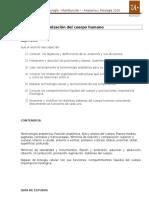 Morfo I Guía 1_2016 (2)