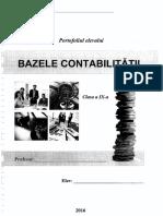 Bazele Contabilitatii Cl9 (3)