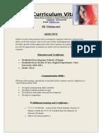 Professional Resume Format (14)