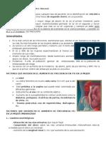 28. ITU y Embarazo