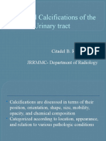 Calcifications of the Urinary Tract