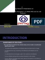 parag project report presentation 10 slides.pptx