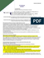 AMBIENTAL TODA LA MATERIA DE OTRA UNI.pdf